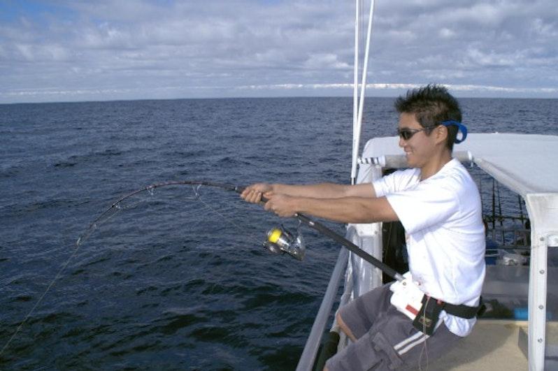 Shimano Jigwrex  What do you think?? Any Review - FishingKaki com